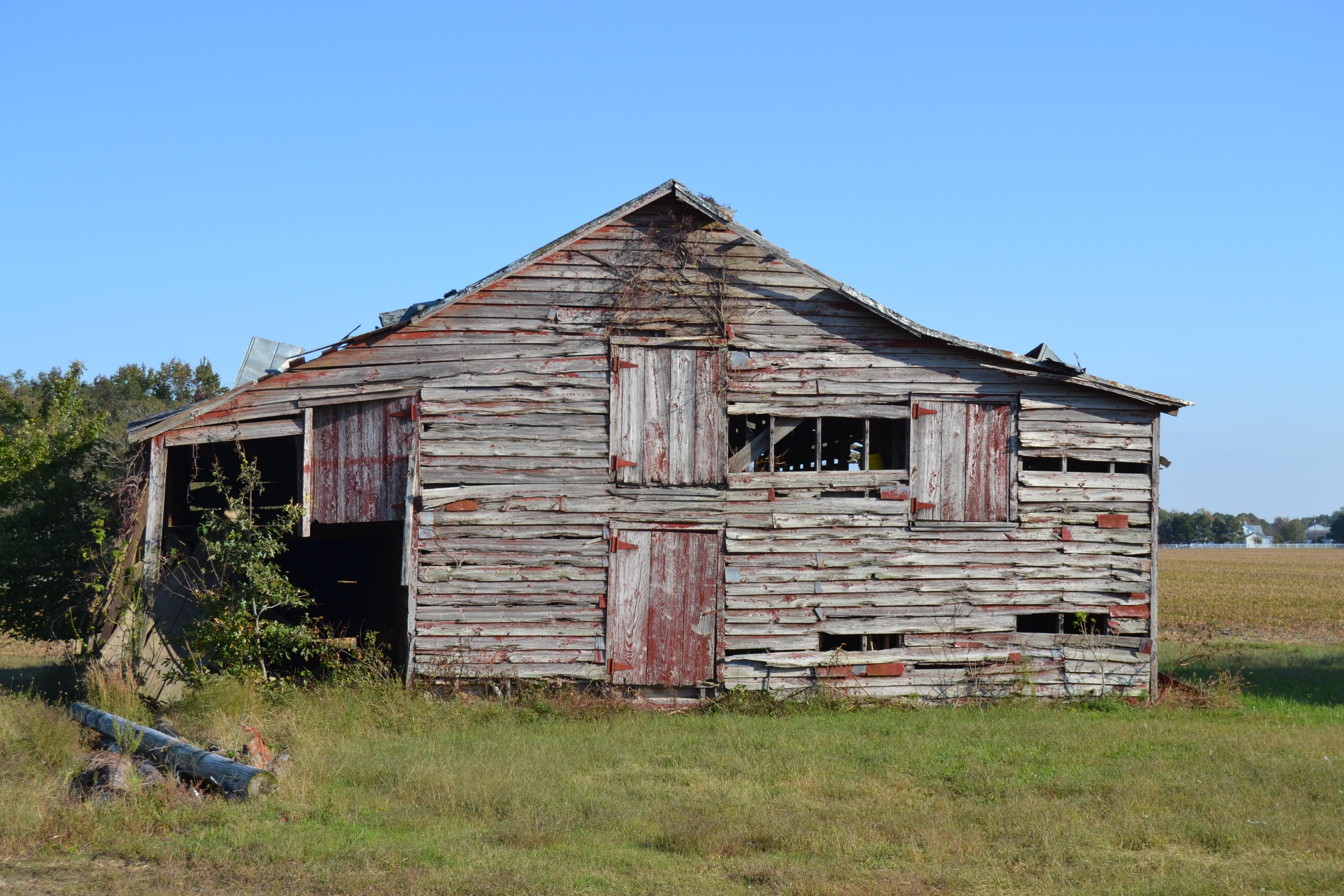 Cotton Barn Charm