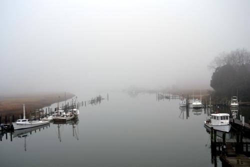 jones creek fog