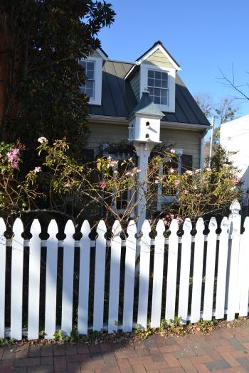 white fence wharf hill3