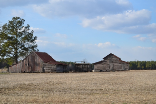 barns on broadwater-001