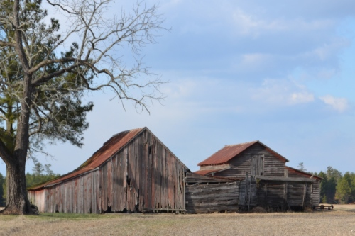 barns on broadwater