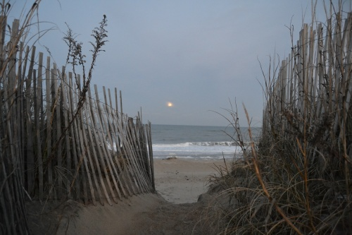 moonrise and fence