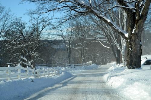 snowy maggie ladd rd
