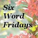 6 word fridays