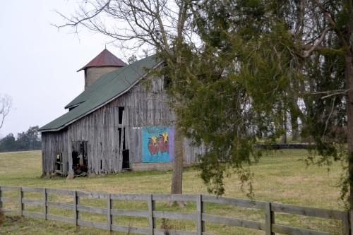 cow barn2