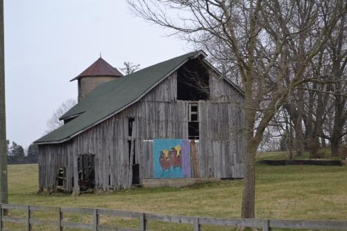 cow barn3