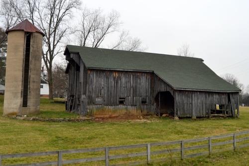 cow barn4a