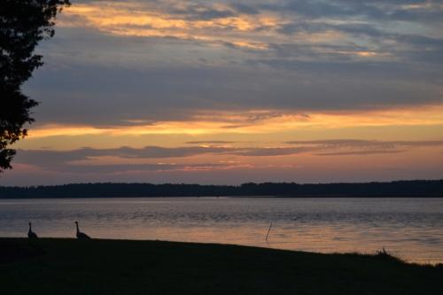 sunset last