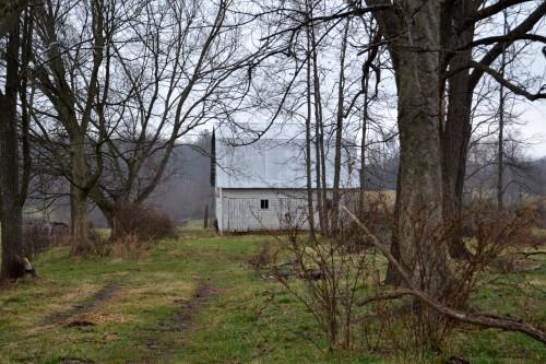 white barn2