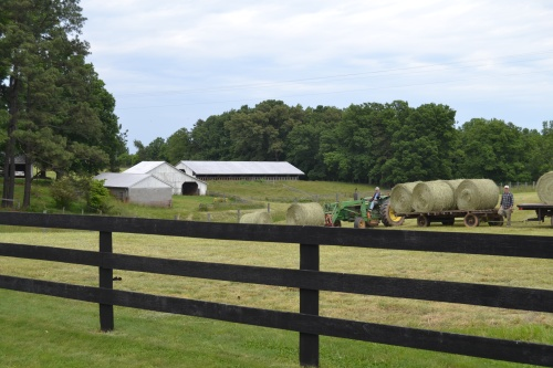 barn and baling hay