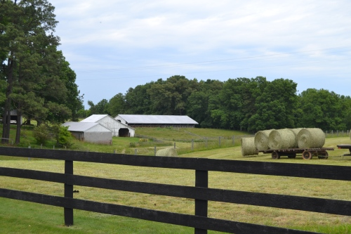 barn and hay bales