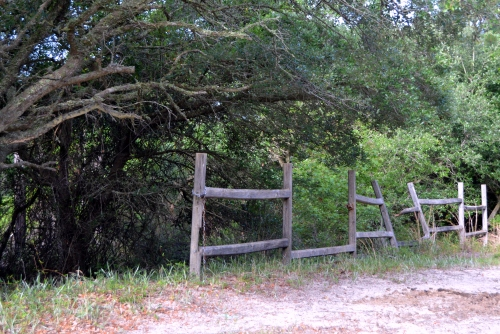 fence 6-23-2013 7-43-02 AM