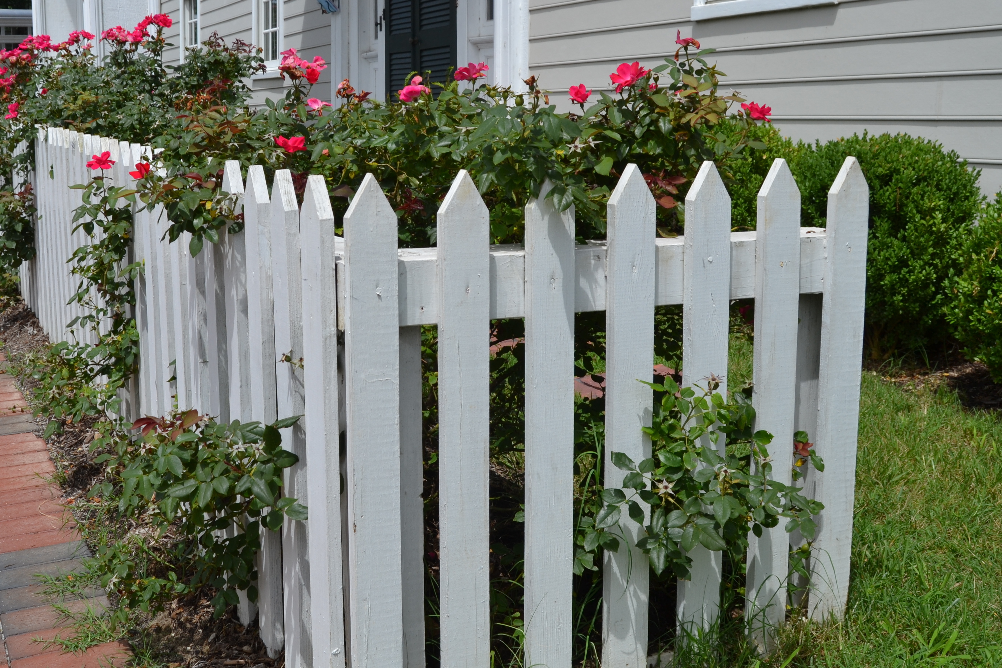 white picket fence these days of mine. Black Bedroom Furniture Sets. Home Design Ideas