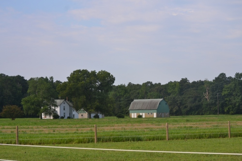 green barn1 7-29-2013 8-32-23 AM