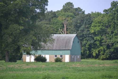 green barn2 7-29-2013 8-32-42 AM