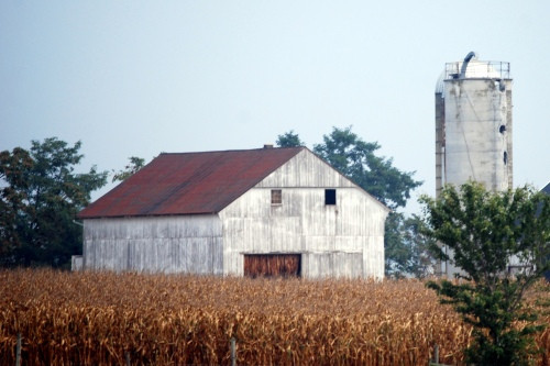 amish barn and silo 9-24-2010 4-58-32 AM