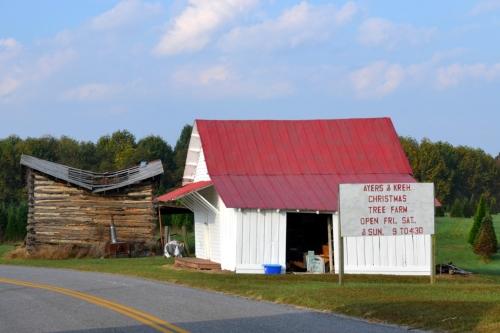 christmas tree farm barn 10-6-2013 9-08-37 AM