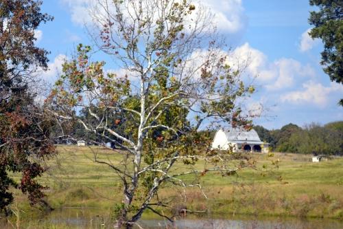 white barn1 10-5-2013 3-04-20 PM
