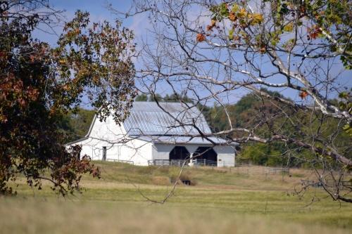 white barn2 10-5-2013 3-04-28 PM