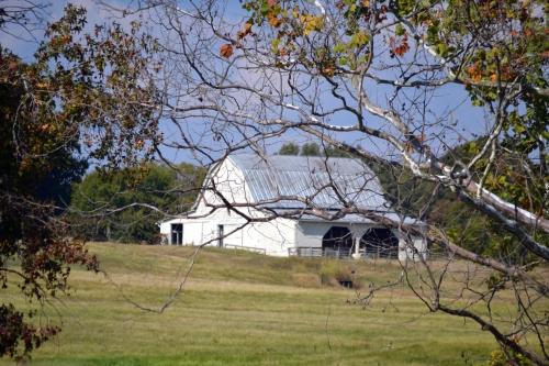 white barn3 10-5-2013 3-04-26 PM