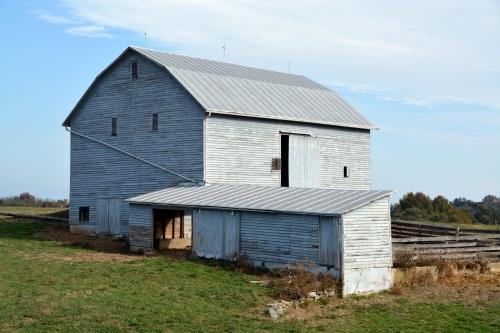 white barn3 10-26-2013 10-37-06 PM