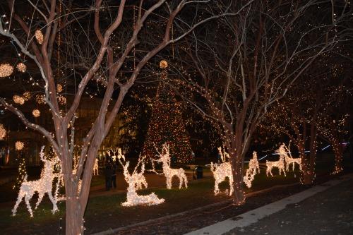 lights at james center 12-7-2013 6-03-05 AM