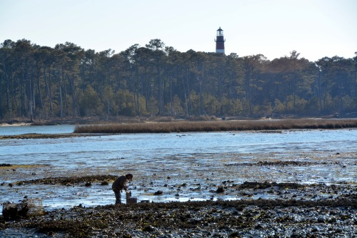 oysterman and lighthouse 2-16-2014 3-36-58 PM