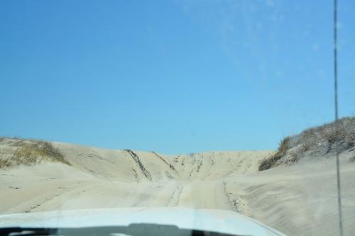 dune1 4-26-2014 11-18-26 AM