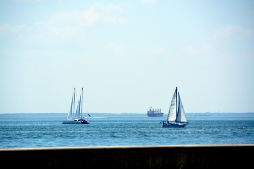 sailboats 4-13-2014 12-39-34 PM