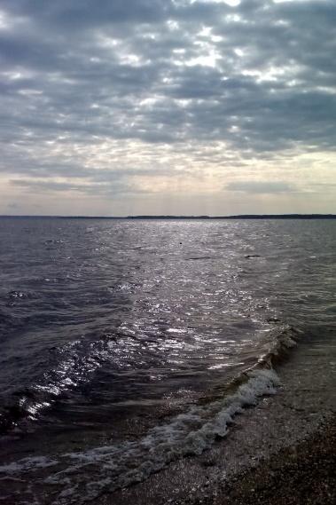 beachcombing1-001