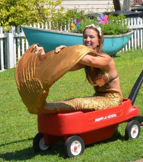 bye mermaid 7-12-2014 3-15-34 PM