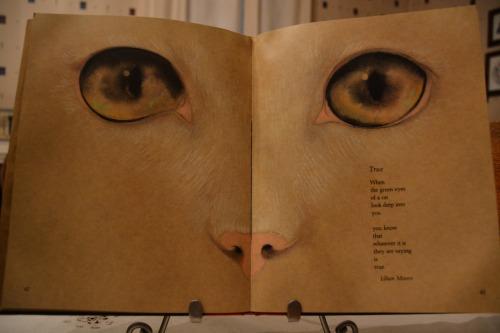 eyes 7-9-2014 7-38-56 PM