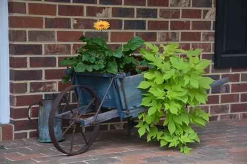 wheelbarrow 8-9-2014 12-41-54 PM