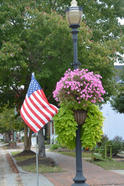 flower planter on main st 10-12-2014 10-34-57 AM