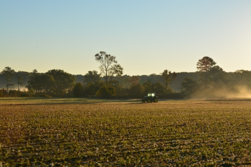 tractor and fog 10-25-2014 7-56-41 AM