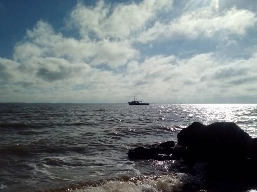 workboat 9-26-2014 9-12-09 AM