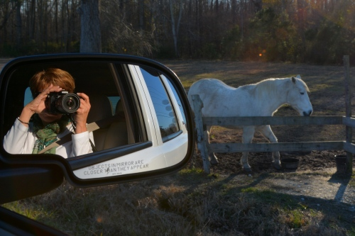 db taking pic of aggie 12-27-2014 3-24-58 PM