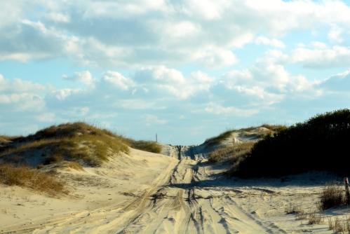 dunes1 11-28-2014 9-04-21 AM
