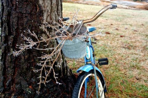 bike stems with ice 1-14-2015 8-41-39 AM
