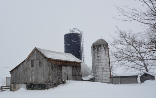 barn and silos 1-30-2015 1-23-49 PM