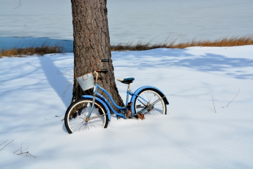 bike in snow 2-17-2015 1-22-09 PM