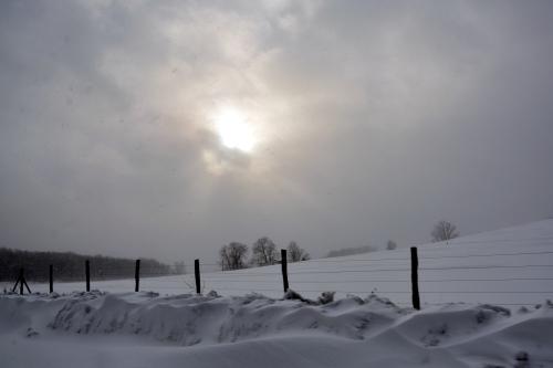 snow fence 1-30-2015 3-46-59 PM
