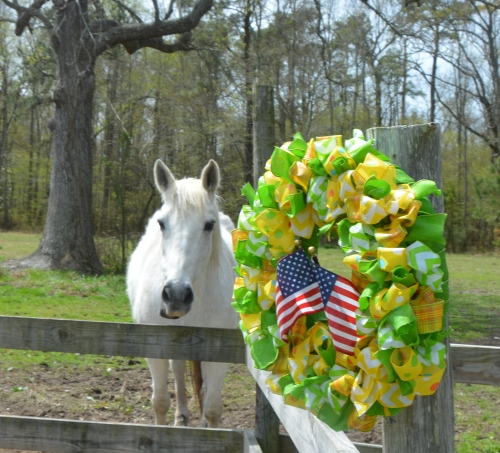 aggie and her wreath 4-11-2015 11-43-19 AM