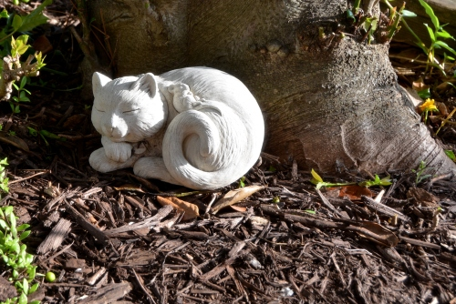 kitty statue 6-19-2015 7-59-22 AM