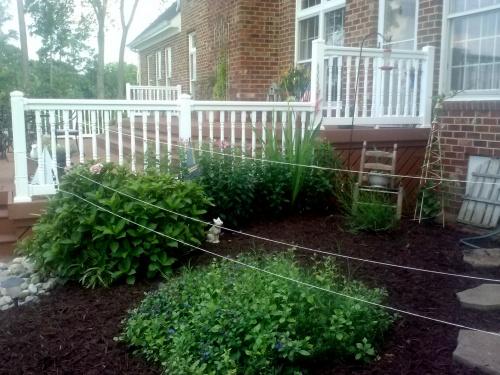 deer fence1
