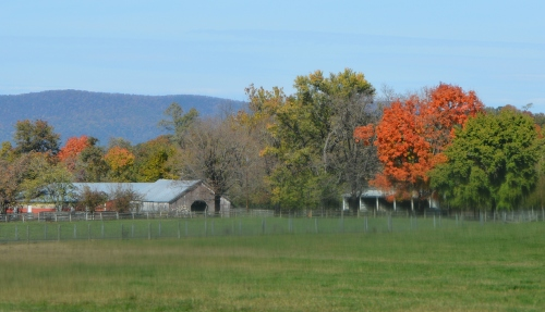 barn and foliage 10-22-2015 12-39-07 PM