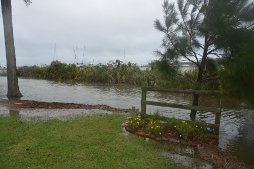 fence high tide 10-4-2015 3-27-01 PM