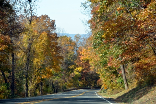 mountain road 10-22-2015 12-31-19 PM