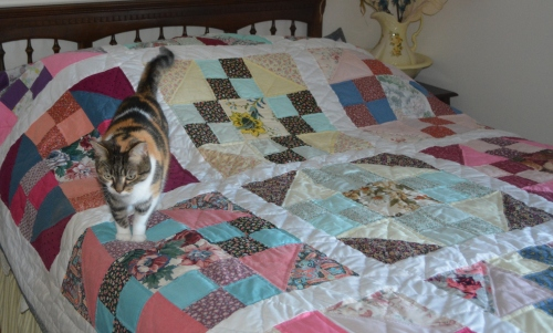 This quilt carries the Sundae seal of approval