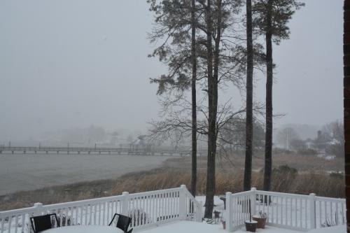 blizzard 1-23-2016 2-53-53 PM